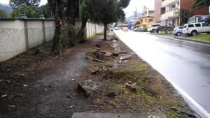sidewalk-300x169