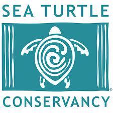 sea-turtle-conservancy-logo
